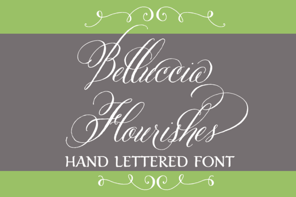 Belluccia Hand Drawn Flourishes