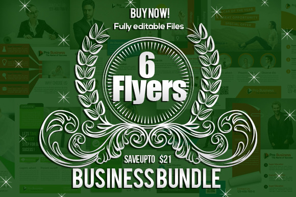 6 Business Field Flyers Bubdle