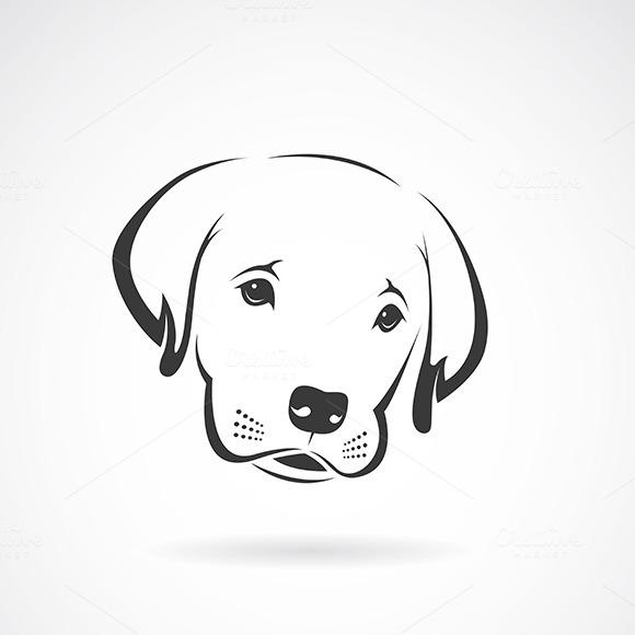 Vector Of An Labrador Puppy Face