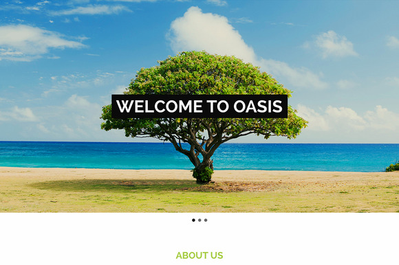 Oasis One Page HTML Template