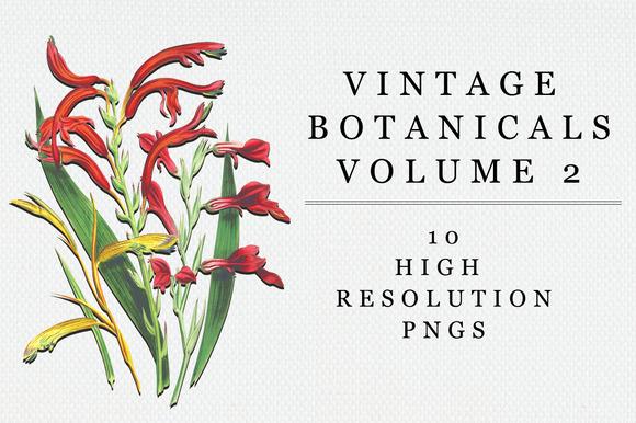 Vintage Botanical Vol2