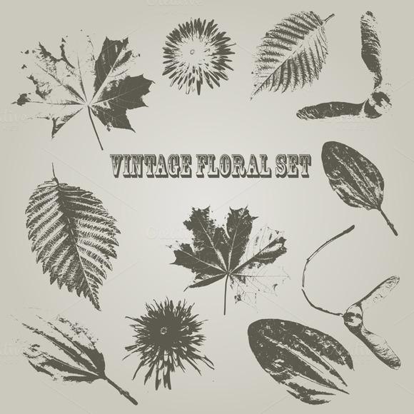 Vector Vintage Style Floral Elements