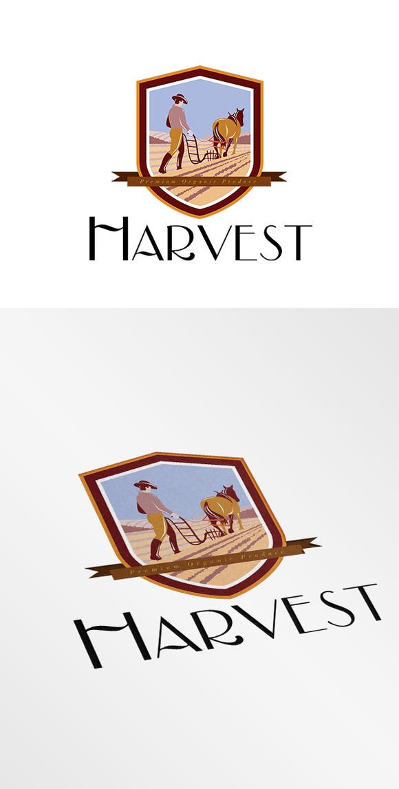 Harvest Organic Farm Produce Logo