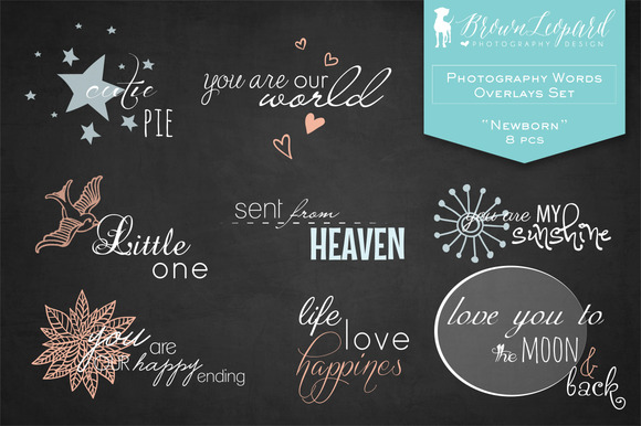 Photography Words Overlays-Newborn