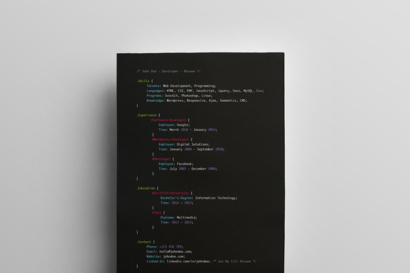 Developers Resume