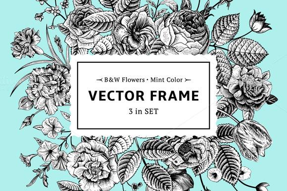 Vector Floral Frame B W Mint Color