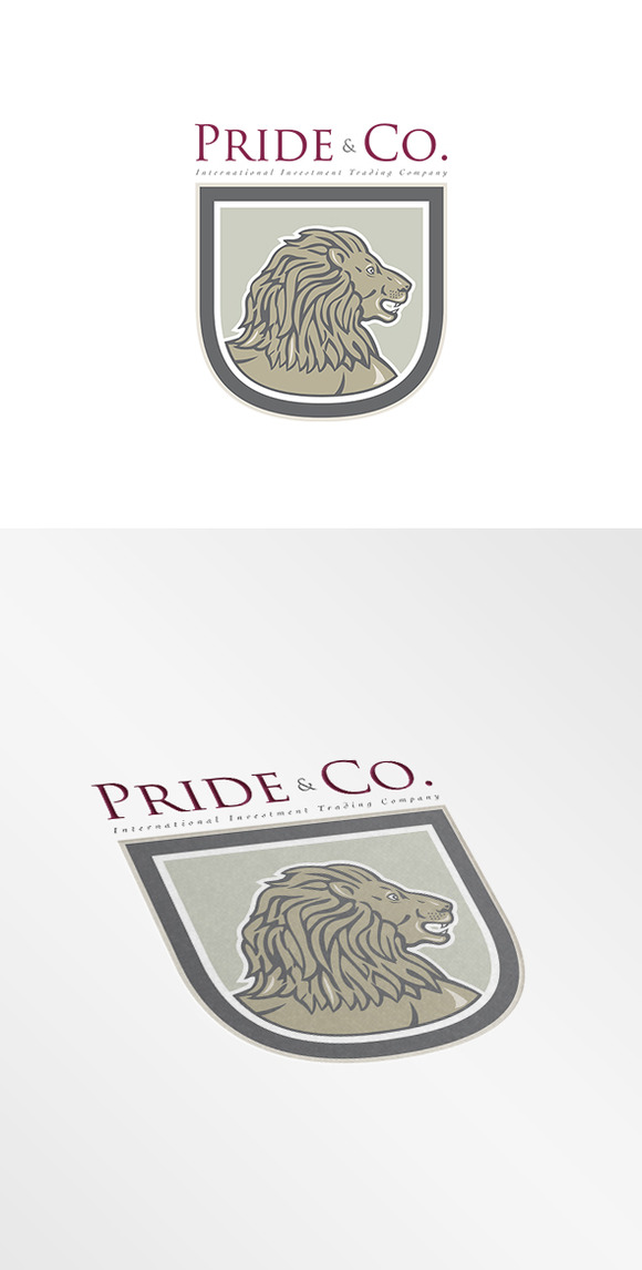 Pride And Co International Investmen