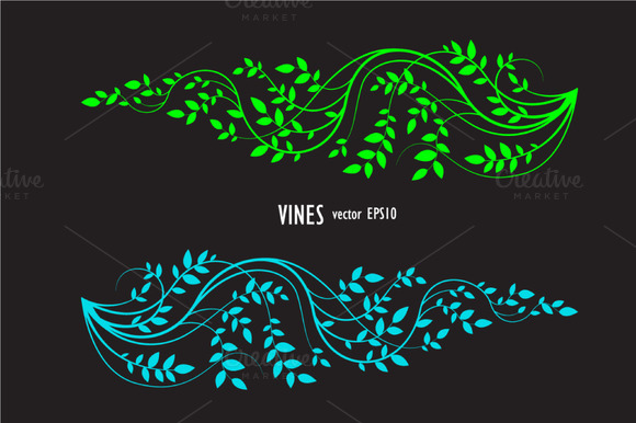 Silhouette Of Vine And Leaves