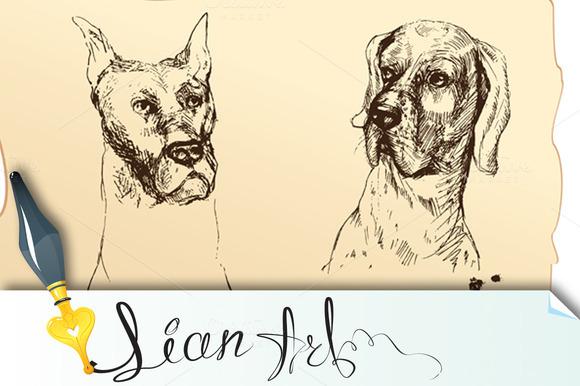 4 Dogs Heads- Dalmatian Bloodhound
