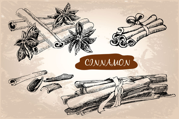 Cinnamon.Set Of Vector Illustrations