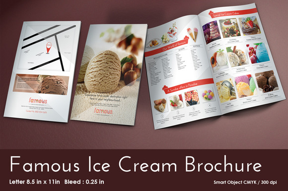 Famous Ice Cream Brochure