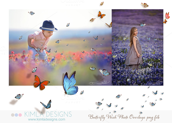 Butterfly Wish Photo Overlays