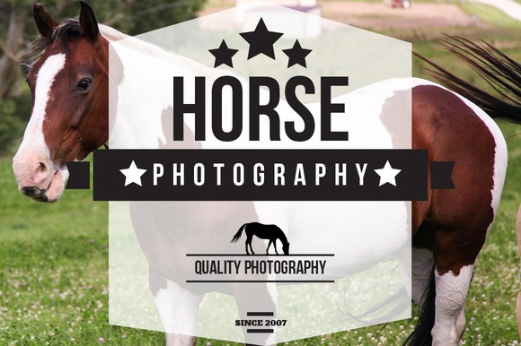 Horse Photography Bundle