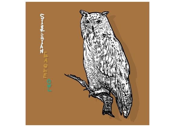 Siberian Eagle Owl Or Bubo Bubo Sib