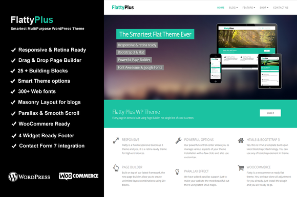FlattyPlus MultiPurpose WP Theme