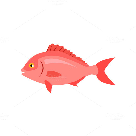 Fish under the water designtube creative design content for Fish tail fin