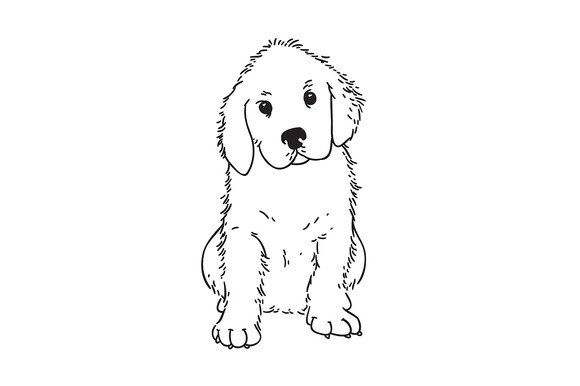 Line Drawing Golden Retriever : Golden retriever line drawing designtube creative