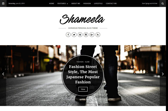 Shameela Gorgeous Blog Theme