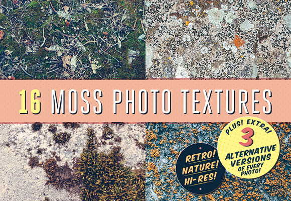 16 Moss Photo Textures