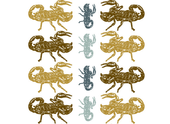 Seamless Pattern Of Scorpion