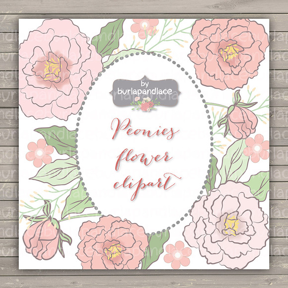 Peonies Wedding Clipart Flower