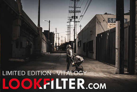 Limited Edition Vitalogy LR Preset