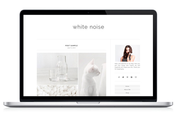 Responsive WP Theme WhiteNoise