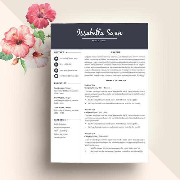 Professional Resume Template CV