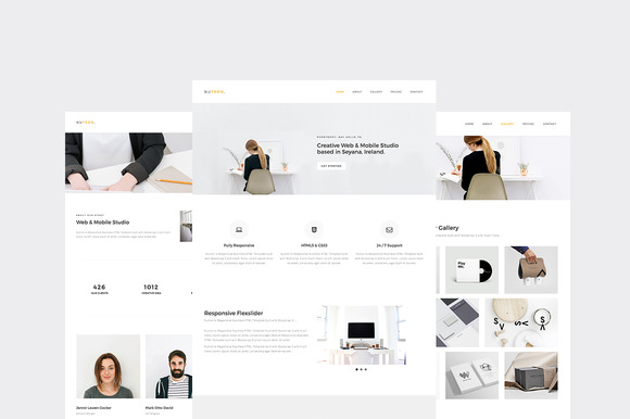 Nutron Responsive Business Website