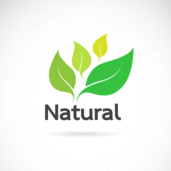 logo natural products 187 designtube creative design content