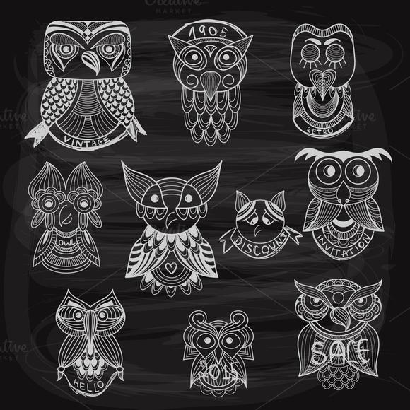 10 Chalk Drawn Owls On Blackboard