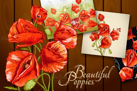 Set Of Poppies Cards