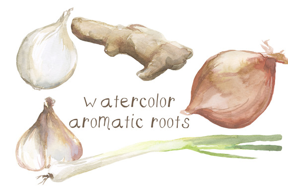 Watercolor Roots Clip Art