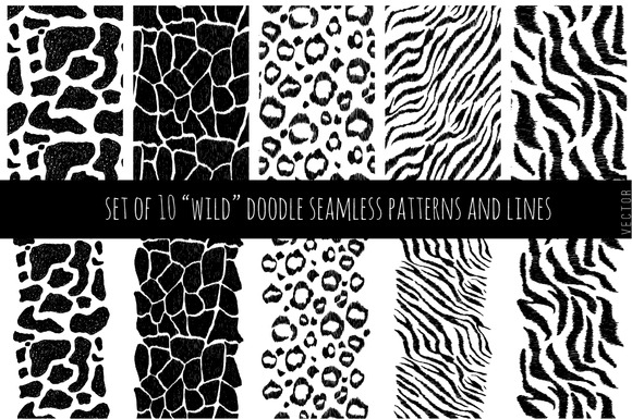 Set Of Wild Patterns And Lines