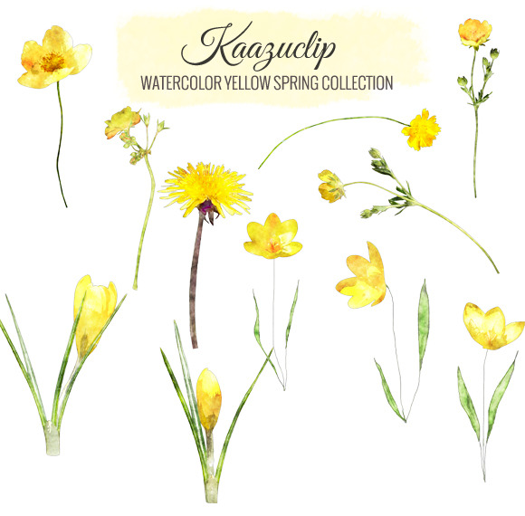 Watercolor Yellow Spring Collection