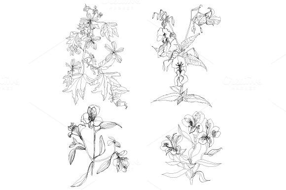 Field Flower Set