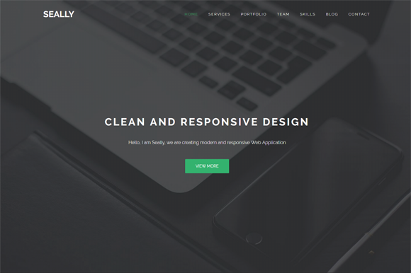 Seally One Page Multipurpose Theme
