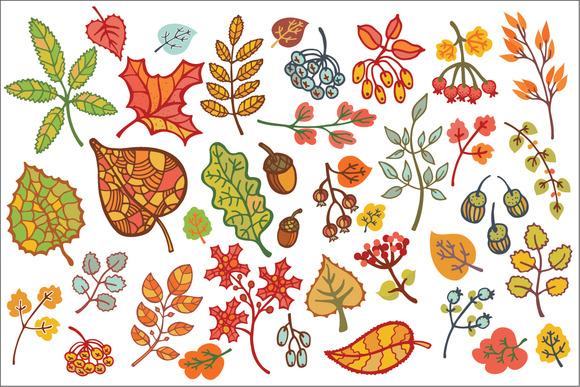 Autumn Leaves Set Vector Clipart