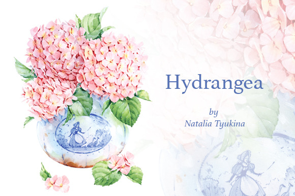Watercolor Pink Hydrangea In Vase