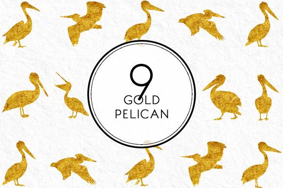 Gold Pelican