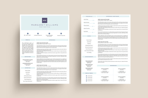 3 Page Resume Template MS Word