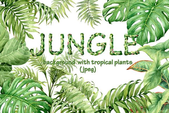 Watercolor Jungle