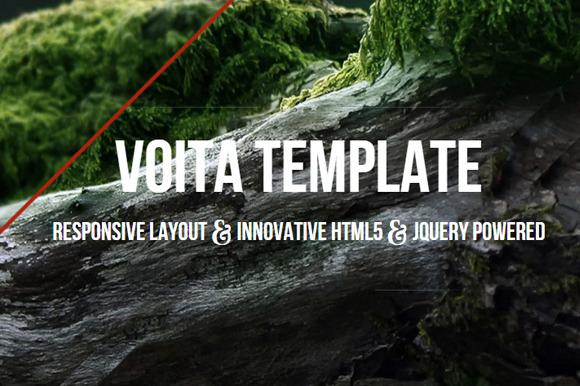 Voita Agency Personal Portfolio