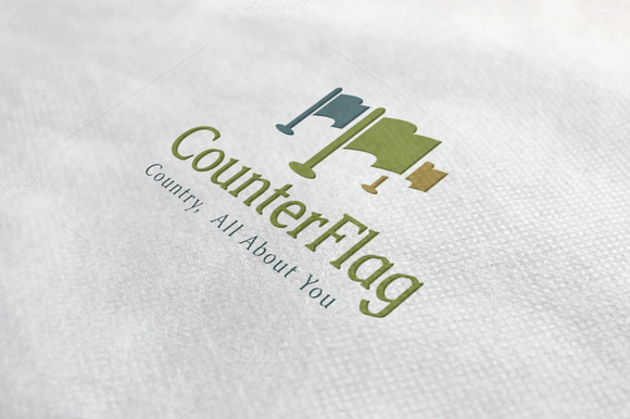 Flag Counter Logo