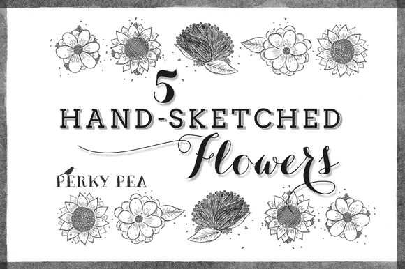 5 Hand Sketched Flowers Volume 1