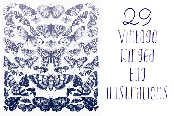Vintage Winged Bugs
