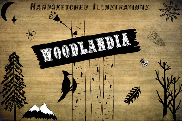 Woodland Hand Drawn Clipart
