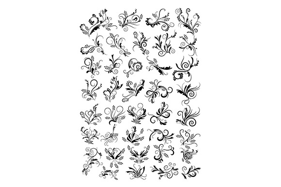 Floral Swirls Ornaments Illustrati