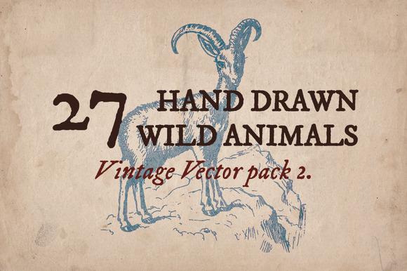 27 Hand Drawn Wild Animals