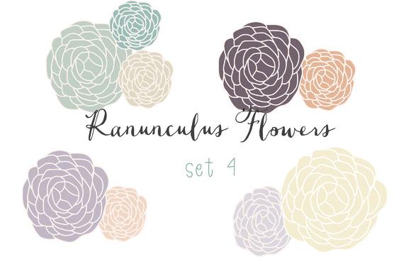 Ranunculus Clip Art Set 4